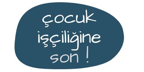 web-logo3